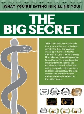The Official The Big Secret Movie 2016 Web Page